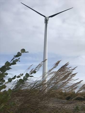 Полиметалл для работы стал использовать энергию ветра в Хабаровском крае