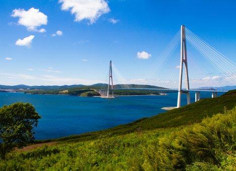 На острове Русском хотят ограничить скорость до 40 километров в час