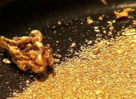 В Приморье нашли новое месторождение золота