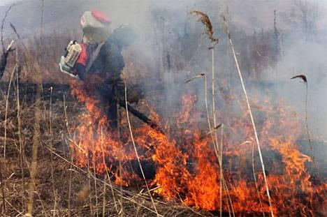 В Приморье более 50 очагов возгорания было ликвидировано на подступах к нацпарку