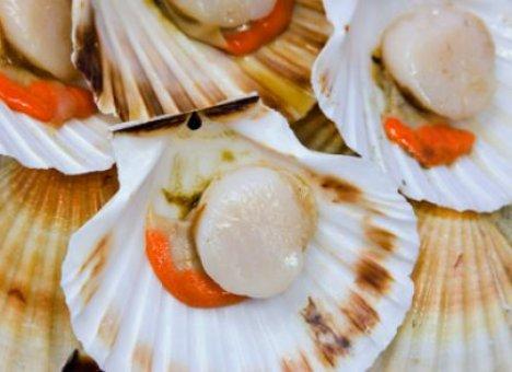 Японцы раскрыли рот на приморские морепродукты