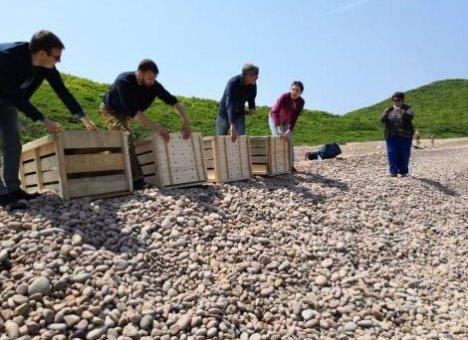 Спасая рядового тюленя