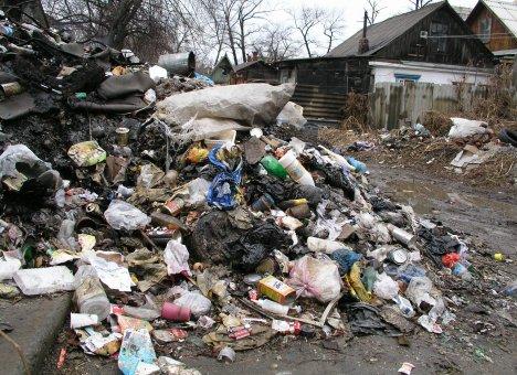 Обуздать мусорную стихию