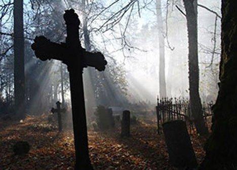На городском кладбище Уссурийска творится нечто
