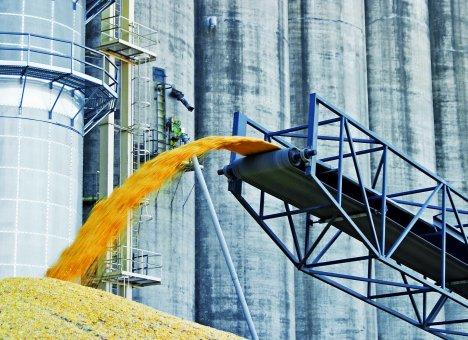 Зерно зависло в амбарах