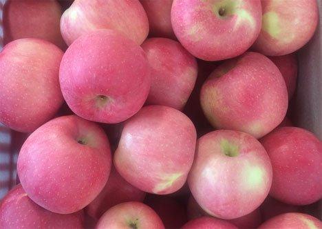 Приморье останется без яблок, слив, персиков, нектаринов и груш из Китая
