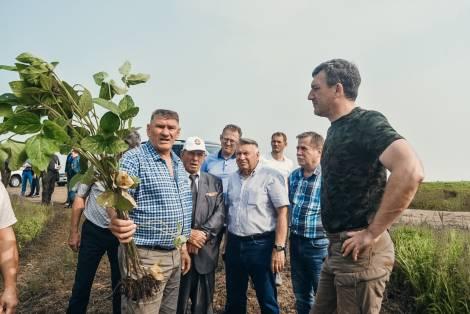 Почти 170 тысяч гектаров посевов пострадало от стихии в Амурской области