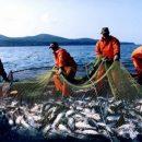 На Камчатке подходит к завершению лососевая путина