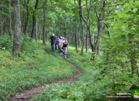 В Приморье обустройство маршрута на популярном у туристов острове начнётся уже в этом году