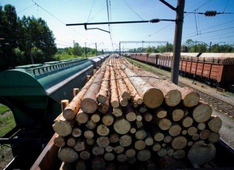 Лесоматериалы в Китай будет вывозить контейнерный поезд