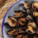 200 тонн морских деликатесов ежегодно намерен выращивать резидент СПВ в Приморье