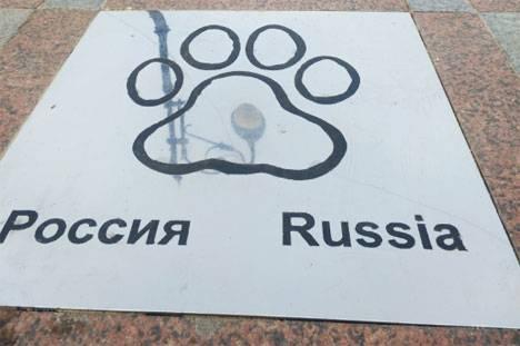 Новые следы тигра появились на главной набережной Владивостока
