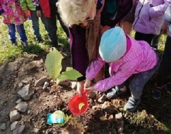 Во Владивостоке прошла акция по высадке деревьев