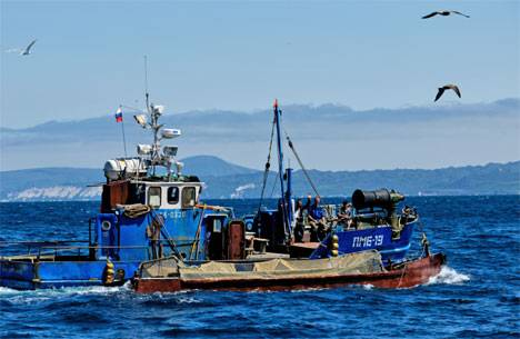 На Курилах рыбаки установили рекорд по вылову кеты