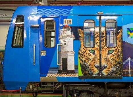 Владивосток представят в московском метро