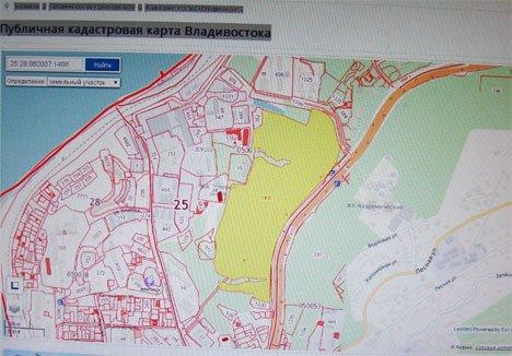 Почти 15 га в одном из лучших районов Владивостока выставляют на аукцион дешевле рыночной цены
