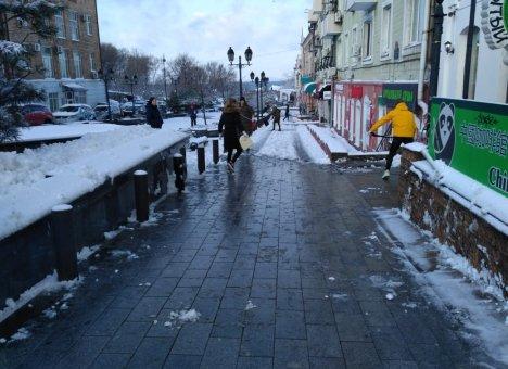 Первый пошел: От должности отстранён руководитель предприятия по уборке снега во Владивостоке