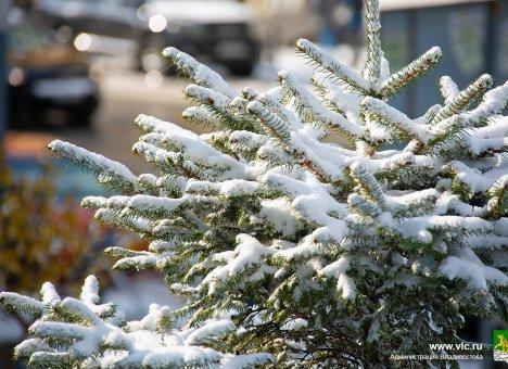Во Владивостоке ожидается снег и гололед