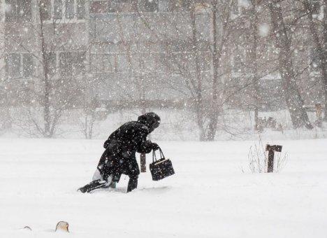 На Рождество во Владивостоке ожидается метель