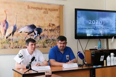 Во Владивостоке WWF России дал старт Всемирному году журавля в бассейне Амур