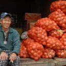 С Китаем попытаются договориться о бесперебойных поставках огурцов и помидоров