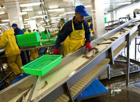 Рыбаки подцепили коронавирус