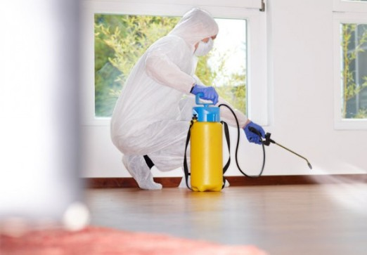 Травля тараканов и прочих вредителей