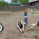 Школьники Приморья могут получить ценные призы за выращенную капусту