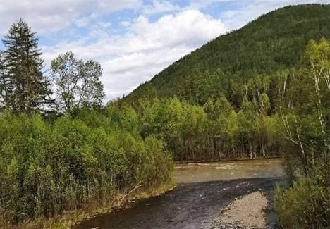 Полторы тысячи километров грязи обнаружены в дальневосточных реках