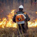 Приморье впервые за 10 лет признано готовым к пожароопасному периоду