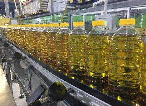 Китайцы выжмут из Приморья масло