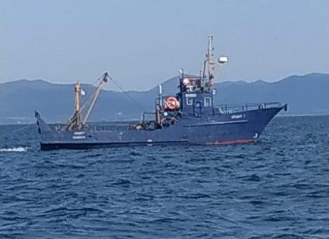 В Приморье загребущие тралы вычищают дно возле заповедных островов