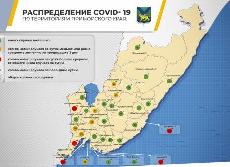 COVID-19: За сутки в Приморье коронавирус диагностирован еще у 84 человек