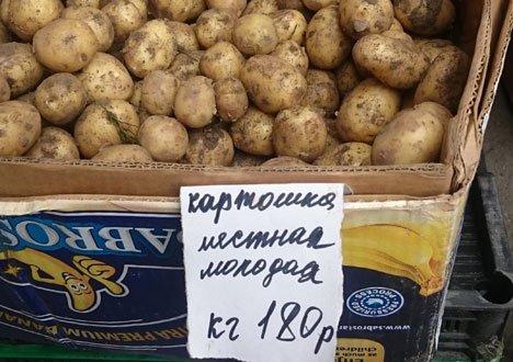 В Приморье цена на молодой картофель взлетела до небывалых высот