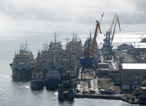 Одна из крупнейших рыбодобывающих компаний Приморья сменила гендиректора