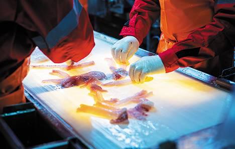 Рыба: переработка в приоритете