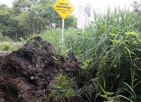 Жители Приморья бьют тревогу: В заповеднике обнаружено масштабное строительство