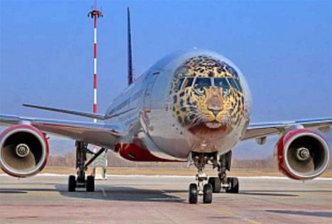 Расширен список субсидируемых авиарейсов на Дальнем Востоке