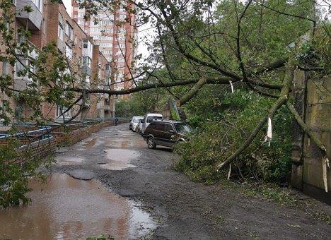 Будьте осторожны: Супертайфун уже в Приморье