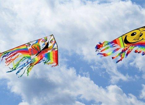 Всемирный день воздушных змеев отметят в столице Приморья