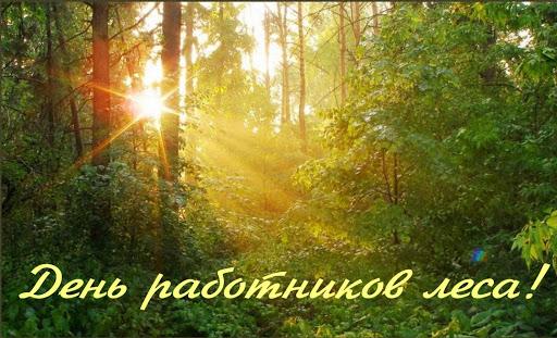 День работников леса