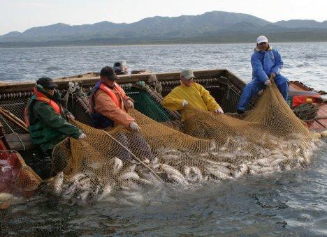 Общественный совет при Росрыболовстве: Конфликт рыбаков и РРПК должен разрешать только суд