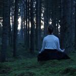 """Медитации как часть процесса. Фото: заповедник """"Костомукшский"""""""
