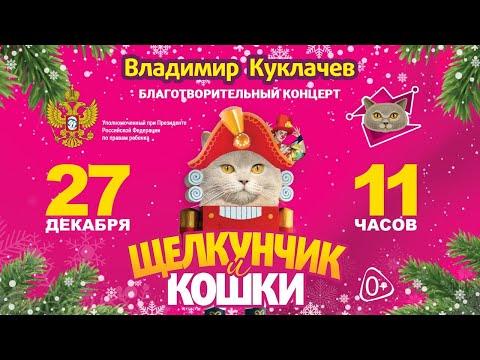 Жители Карелии могут бесплатно побывать на онлайн-показе новогодней сказки «Щелкунчик и кошки»